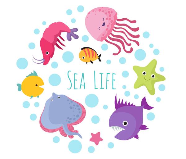 Aquatic-Animals