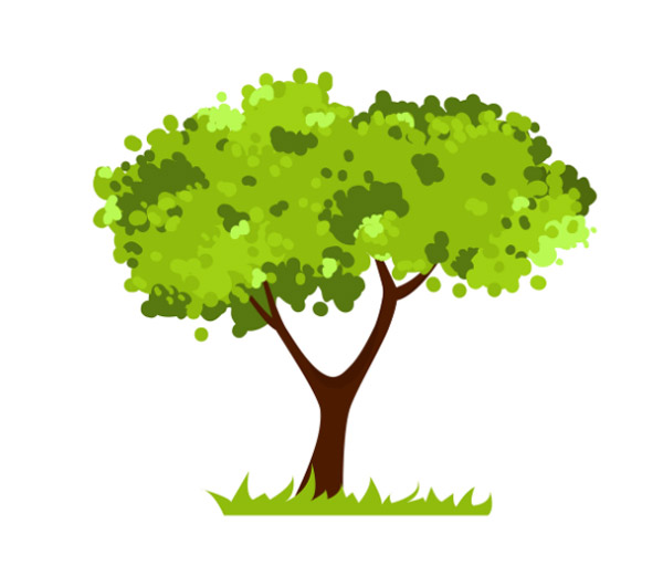 Types-of-Trees